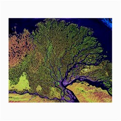 Lena River Delta A Photo Of A Colorful River Delta Taken From A Satellite Small Glasses Cloth (2-Side)