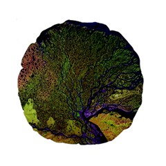 Lena River Delta A Photo Of A Colorful River Delta Taken From A Satellite Standard 15  Premium Round Cushions