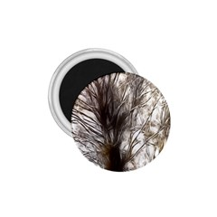 Tree Art Artistic Tree Abstract Background 1.75  Magnets