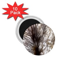 Tree Art Artistic Tree Abstract Background 1 75  Magnets (10 Pack)