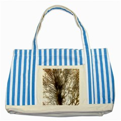 Tree Art Artistic Tree Abstract Background Striped Blue Tote Bag