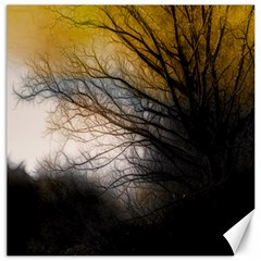 Tree Art Artistic Abstract Background Canvas 16  x 16