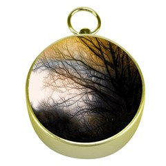 Tree Art Artistic Abstract Background Gold Compasses