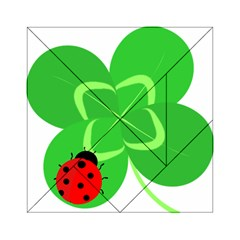 Insect Flower Floral Animals Green Red Line Acrylic Tangram Puzzle (6  x 6 )