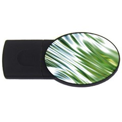 Fluorescent Flames Background Light Effect Abstract Usb Flash Drive Oval (2 Gb)