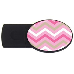 Pink Red White Grey Chevron Wave USB Flash Drive Oval (2 GB)