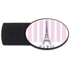 Pink Paris Eiffel Tower Stripes France USB Flash Drive Oval (4 GB)