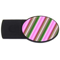 Pink And Green Abstract Pattern Background USB Flash Drive Oval (2 GB)