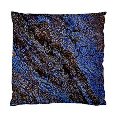 Cracked Mud And Sand Abstract Standard Cushion Case (One Side)