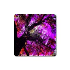 Pink Abstract Tree Square Magnet