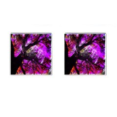 Pink Abstract Tree Cufflinks (square)