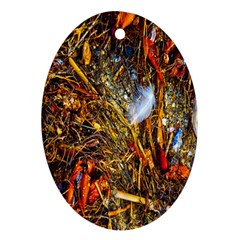 Abstract In Orange Sealife Background Abstract Of Ocean Beach Seaweed And Sand With A White Feather Ornament (Oval)