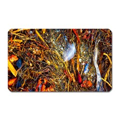 Abstract In Orange Sealife Background Abstract Of Ocean Beach Seaweed And Sand With A White Feather Magnet (Rectangular)