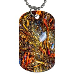 Abstract In Orange Sealife Background Abstract Of Ocean Beach Seaweed And Sand With A White Feather Dog Tag (two Sides)