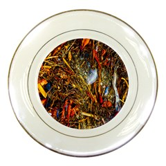 Abstract In Orange Sealife Background Abstract Of Ocean Beach Seaweed And Sand With A White Feather Porcelain Plates