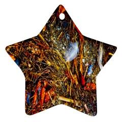 Abstract In Orange Sealife Background Abstract Of Ocean Beach Seaweed And Sand With A White Feather Star Ornament (Two Sides)