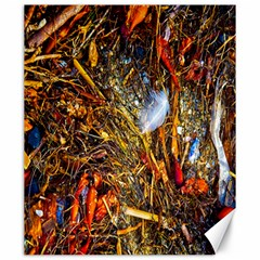 Abstract In Orange Sealife Background Abstract Of Ocean Beach Seaweed And Sand With A White Feather Canvas 20  X 24