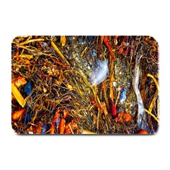 Abstract In Orange Sealife Background Abstract Of Ocean Beach Seaweed And Sand With A White Feather Plate Mats