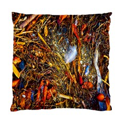 Abstract In Orange Sealife Background Abstract Of Ocean Beach Seaweed And Sand With A White Feather Standard Cushion Case (Two Sides)
