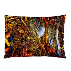 Abstract In Orange Sealife Background Abstract Of Ocean Beach Seaweed And Sand With A White Feather Pillow Case
