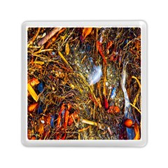 Abstract In Orange Sealife Background Abstract Of Ocean Beach Seaweed And Sand With A White Feather Memory Card Reader (Square)