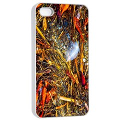 Abstract In Orange Sealife Background Abstract Of Ocean Beach Seaweed And Sand With A White Feather Apple Iphone 4/4s Seamless Case (white)