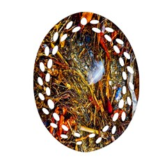Abstract In Orange Sealife Background Abstract Of Ocean Beach Seaweed And Sand With A White Feather Oval Filigree Ornament (Two Sides)