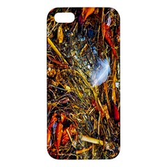 Abstract In Orange Sealife Background Abstract Of Ocean Beach Seaweed And Sand With A White Feather Apple iPhone 5 Premium Hardshell Case