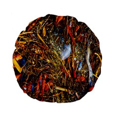 Abstract In Orange Sealife Background Abstract Of Ocean Beach Seaweed And Sand With A White Feather Standard 15  Premium Flano Round Cushions