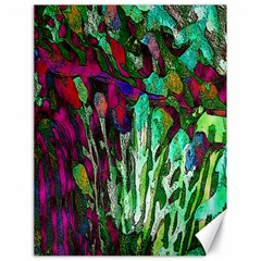 Bright Tropical Background Abstract Background That Has The Shape And Colors Of The Tropics Canvas 18  x 24