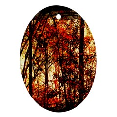 Forest Trees Abstract Ornament (oval)