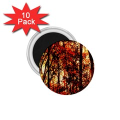 Forest Trees Abstract 1 75  Magnets (10 Pack)