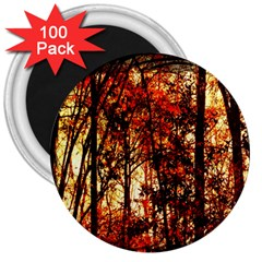 Forest Trees Abstract 3  Magnets (100 Pack)