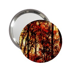 Forest Trees Abstract 2 25  Handbag Mirrors
