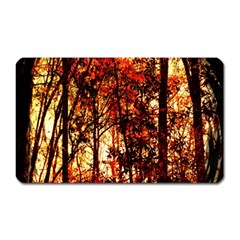 Forest Trees Abstract Magnet (Rectangular)