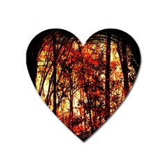 Forest Trees Abstract Heart Magnet