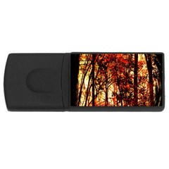 Forest Trees Abstract USB Flash Drive Rectangular (1 GB)