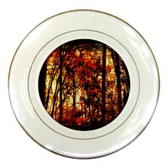 Forest Trees Abstract Porcelain Plates