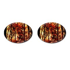 Forest Trees Abstract Cufflinks (oval)