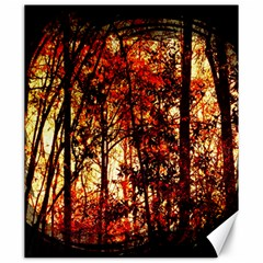 Forest Trees Abstract Canvas 20  x 24