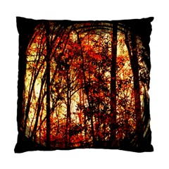 Forest Trees Abstract Standard Cushion Case (One Side)