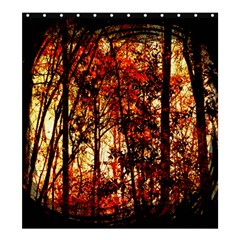Forest Trees Abstract Shower Curtain 66  x 72  (Large)