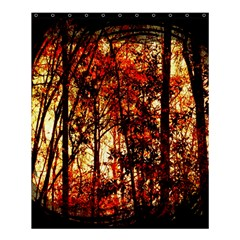 Forest Trees Abstract Shower Curtain 60  x 72  (Medium)