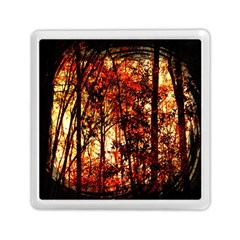 Forest Trees Abstract Memory Card Reader (Square)