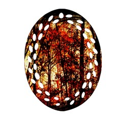 Forest Trees Abstract Ornament (oval Filigree)