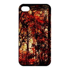 Forest Trees Abstract Apple iPhone 4/4S Premium Hardshell Case