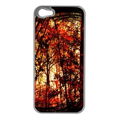 Forest Trees Abstract Apple Iphone 5 Case (silver)