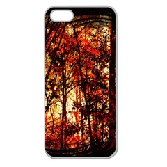 Forest Trees Abstract Apple Seamless Iphone 5 Case (clear)