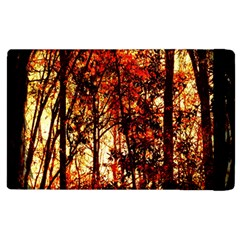Forest Trees Abstract Apple Ipad 3/4 Flip Case