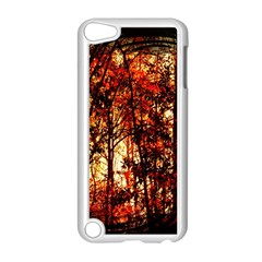 Forest Trees Abstract Apple Ipod Touch 5 Case (white)